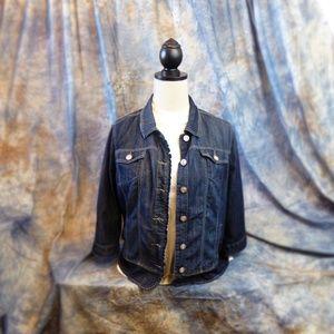 Dress Barn (my go to jacket) Denim 3X